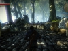 the-witcher-2-wald
